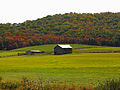 Fall-barn - West Virginia - ForestWander.jpg