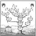 Family tree Test2.jpg