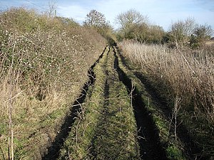 English: Fenland byway Slightly rutted here, v...