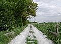 Field Lane, Sproatley - geograph.org.uk - 428559.jpg