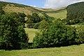 Fields by Fronlas - geograph.org.uk - 1421008.jpg
