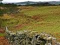 Fields near the Wood of Dervaird - geograph.org.uk - 669857.jpg