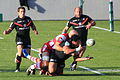 File-ST vs Gloucester - Match - 8811.JPG