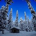 Finland 2012-01-28 (6833845778).jpg