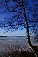 Finland 2014-03-16 (13386579053).jpg