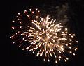 FireworksBp.jpg