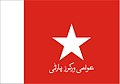 Flag of Awami Workers party.jpg