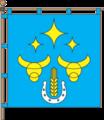 Flags of Vesele.png