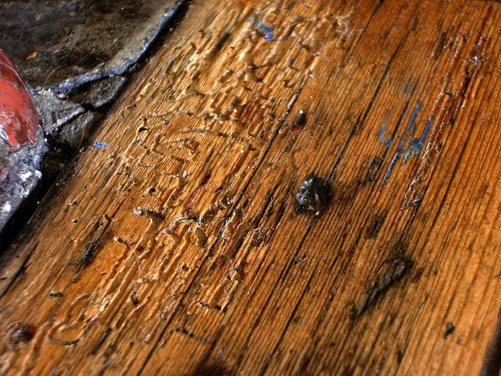 fumigateur insectes
