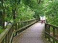 Flottstelle - Steg (Footbridge) - geo.hlipp.de - 39291.jpg