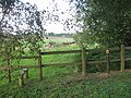 Footpath junction near Cork Wood - geograph.org.uk - 1438101.jpg