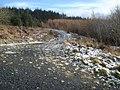 Forest track junction on Black Hill - geograph.org.uk - 654319.jpg