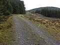 Forestry track at Blaen-Peithnant - geograph.org.uk - 2112487.jpg