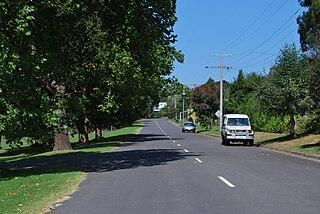Forrest, Victoria Town in Victoria, Australia