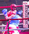 Fort Jackson Boxing Smoker 130803-A-IL912-404.jpg