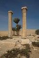 Fragments of a Palm Column MET Unis Temple.jpg