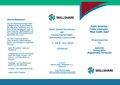 Freie Lizenzen-MN.pdf