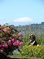 Frutillar, X Región, Chile - panoramio - Pedro Martha (6).jpg