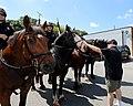 Gaithersburg Labor Day Parade (44420207972).jpg