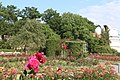 Gardens on Petřín Hill IMG 3037.JPG