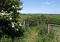 Gateways above Lower Borough - geograph.org.uk - 844011.jpg