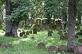 Gelnhausen Jüdischer Friedhof 17.JPG