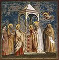 Giotto di Bondone - No. 19 Scenes from the Life of Christ - 3. Presentation of Christ at the Temple - WGA09197.jpg