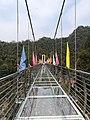 Glass bridge in Longshan National Forest Park, Picture7.jpg