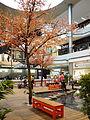 Glattzentrum - Innenansicht - Hanami 2012-04-12 16-56-58 (P7000).jpg
