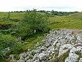 Glyn Hepste - looking towards Bryn-cul - geograph.org.uk - 930613.jpg