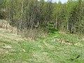 Gmina Trzcianne, Poland - panoramio (1).jpg
