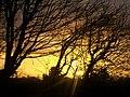 Golden Sunset over Llanteg - geograph.org.uk - 1051349.jpg