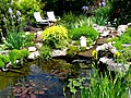 Gorgeous pond and water feature (3560811399).jpg
