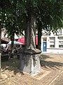 Grave - Markt - Natuurstenen pomp.jpg
