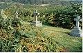 Gravestones, Dunskey Estate - geograph.org.uk - 265517.jpg
