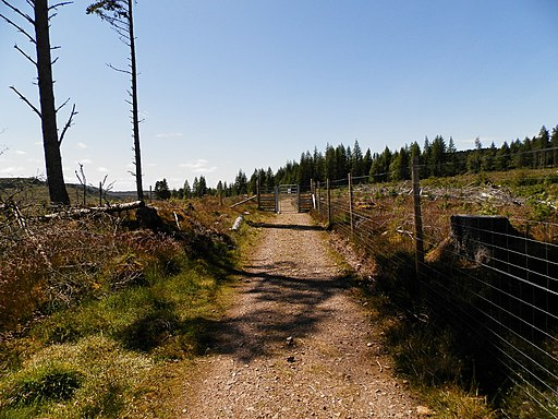 Great Glen Way near Blackfold (geograph 6193471)