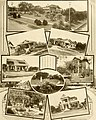 Great San Antonio, the city of destiny and of your destination (1918) (14784476582).jpg