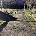 Greenhead Moss Community Nature Park - panoramio (17).jpg