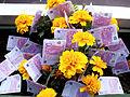 Growing Free Money on Flowers.jpg