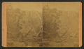 Gulch in the Grand Canyon, from Robert N. Dennis collection of stereoscopic views.png