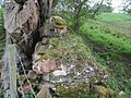 Hadrian's Wall unrestored - geograph.org.uk - 3588491 - cropped.jpg