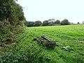 Hall Farm, sheep pasture - geograph.org.uk - 559003.jpg