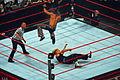 Hardy vs Michaels.jpg