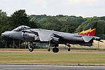 Harrier (5133031986).jpg