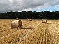 Harvest's end - geograph.org.uk - 563015.jpg