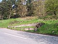 Hayslad Spring - geograph.org.uk - 5512.jpg