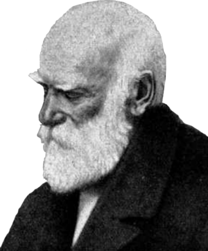 Heinrich Gottfried Gerber - Image: Heinrich Gerber (1832 1912)