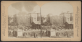 Herd of elephants, Central Park, N.Y, from Robert N. Dennis collection of stereoscopic views.png