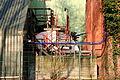 Herne - Kastanienallee - Kraftwerk Shamrock 13 ies.jpg
