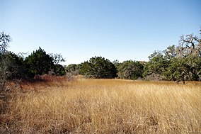 Hill Country State Natural Area.jpg
